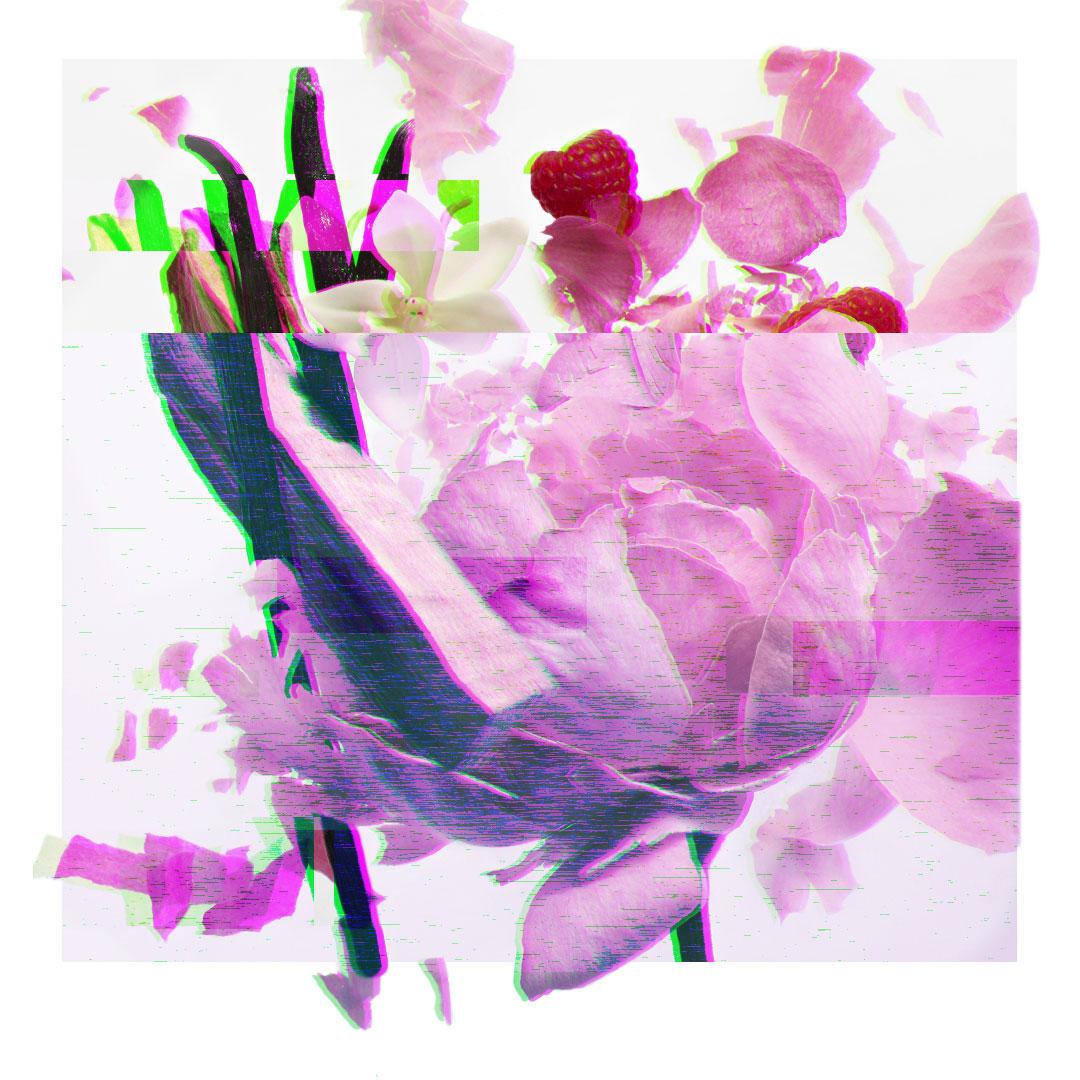 glitch-statique-jpg